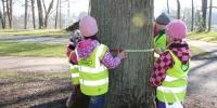 Metsamatk puud-2016 053